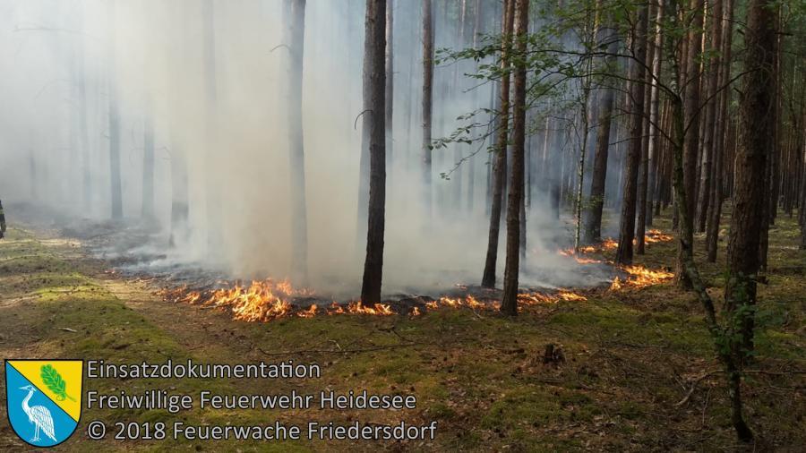 Einsatz 96/2018 | 500m² Waldbodenbrand | L40 OV Bindow - Senzig | 24.07.2018