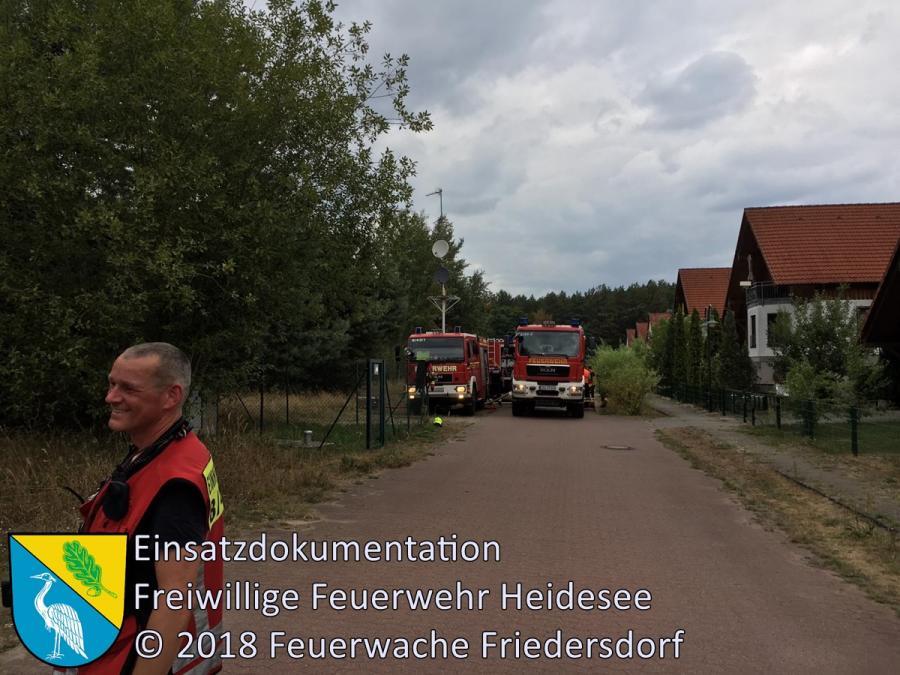 Einsatz 110/2018 | 2000m² Flächen- und Waldbrand | Wolzig Parkstraße | 14.08.2018