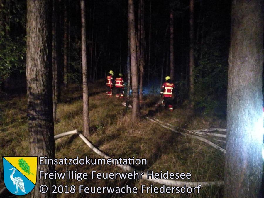 Einsatz 115/2018 | 100m² Waldbodenbrand | Friedersdorf OV AS Friedersdorf - Deupo | 23.08.2018