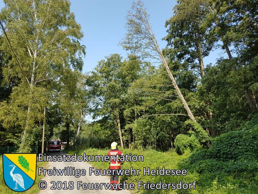 Einsatz 121/2018 | 2 Bäume drohen auf Straße zu stürzen | Bindow Lehnschulzenweg | 29.08.2018