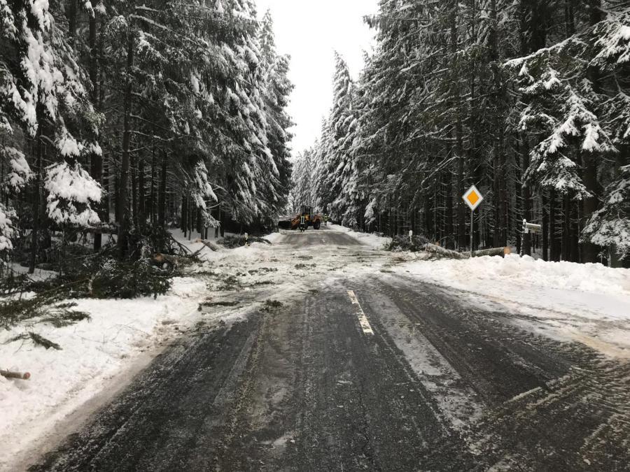 Baum über Fahrbahn Kirchberg-Zell 2