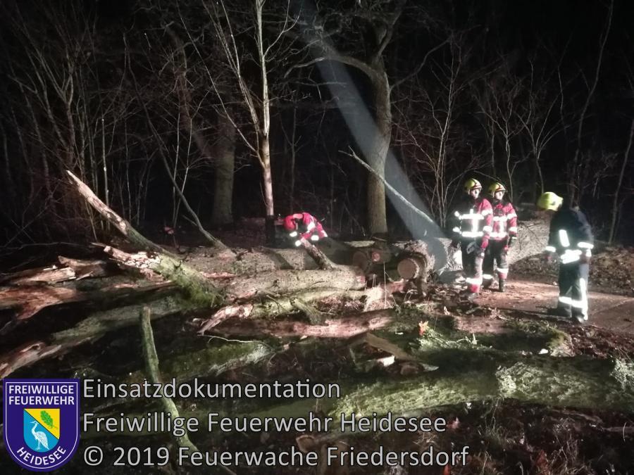 Einsatz 12/2019 | Baum auf Straße | Blossin Waldweg | 28.01.2019
