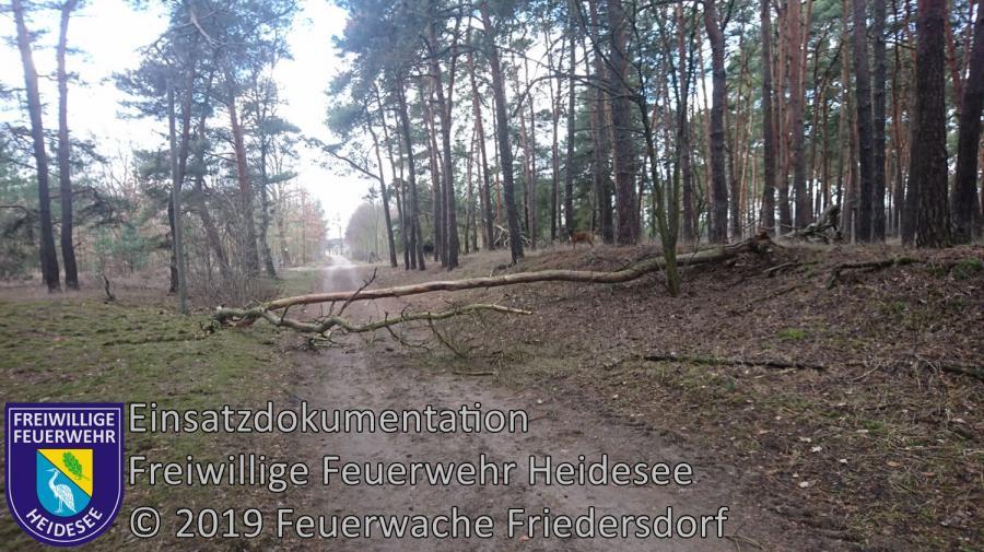 Einsatz 17/2019 | Baum auf Straße | Friedersdorf Wilhelmstraße | 12.02.2019