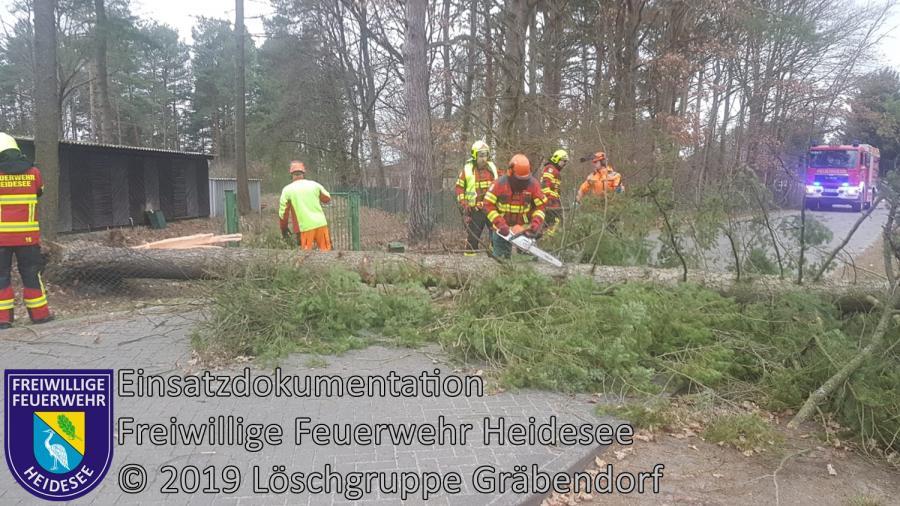 Einsatz 20/2019 | Baum auf Straße | Gräbendorf Frauenseestraße | 04.03.2019