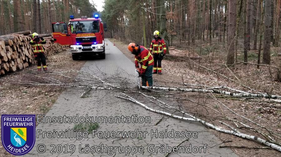 Einsatz 22/2019 | Baum auf Straße und in Telefonleitung | Gräbendorf Wusterhausener Straße | 08.03.2019