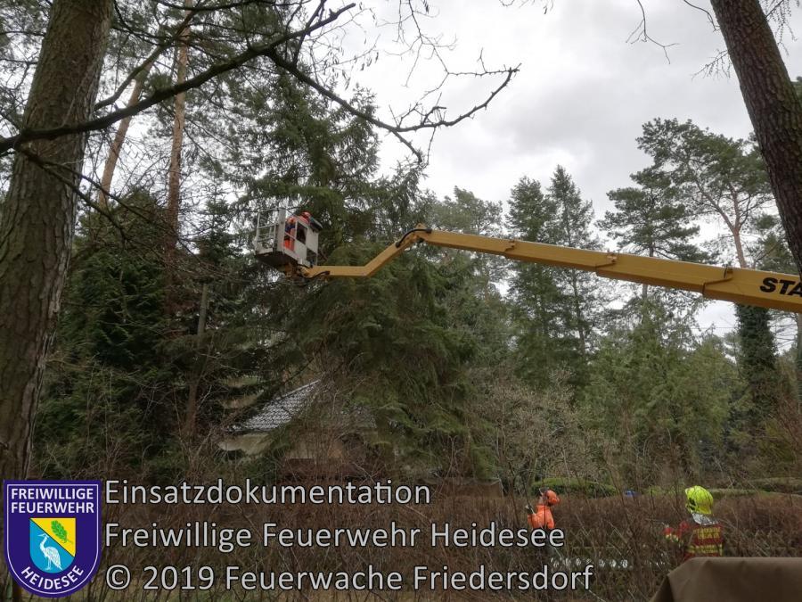 Einsatz 23/2019 | Fichte droht auf Haus zu stürzen | Dolgenbrodt verl. Mariannenstraße | 08.03.2019