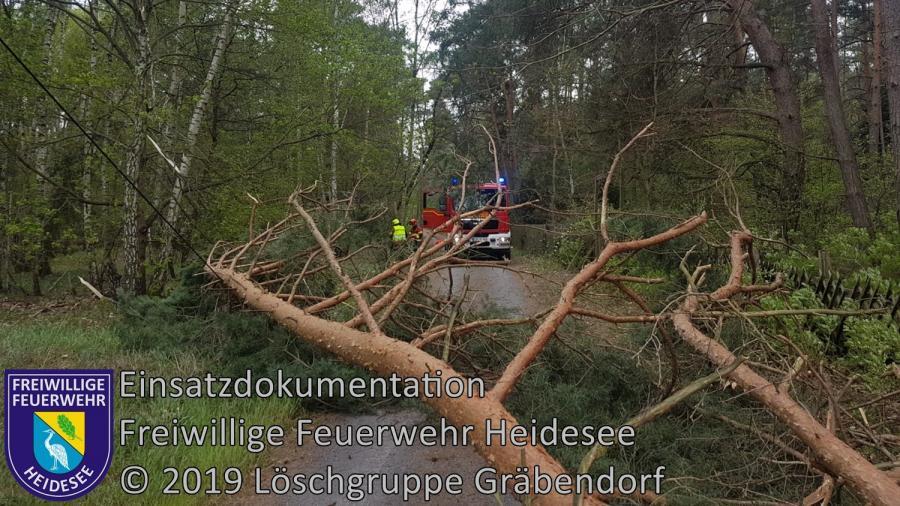 Einsatz 39/2019 | Baum auf Straße | Gräbendorf Buschgartenweg | 23.04.2019