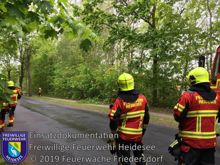 Einsatz 48/2019 | Baumkrone droht zu stürzen | Bindow Bindower Dorfstraße | 11.05.2019