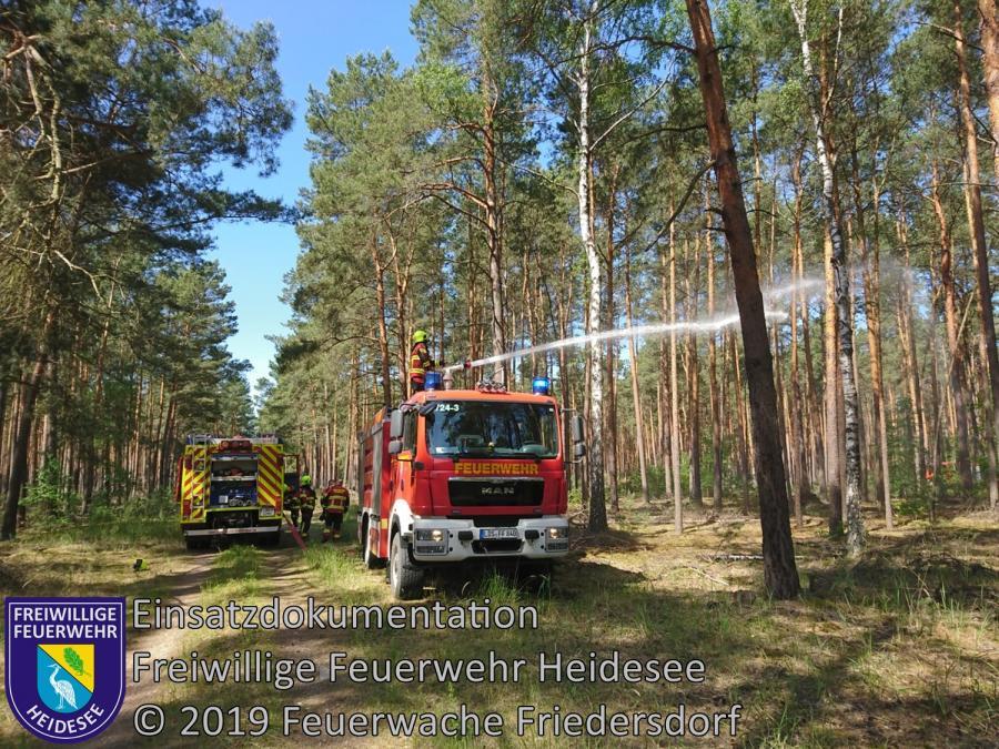 Einsatz 53/2019 | Nachlöscharbeiten 200m² Waldbodenbrand | Prieros Radweg Ri. Märkisch Buchholz | 30.05.2019