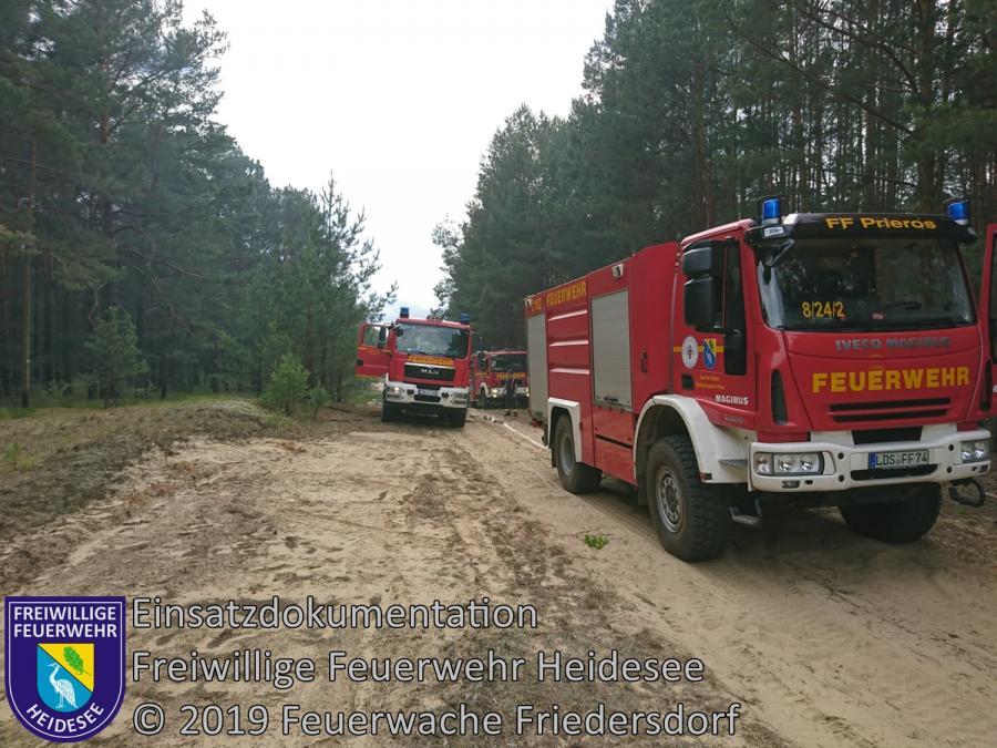 Einsatz 54/2019 | 500m² Waldbodenbrand | Friedersdorf Ri. Siedlung Waldfrieden | 31.05.2019