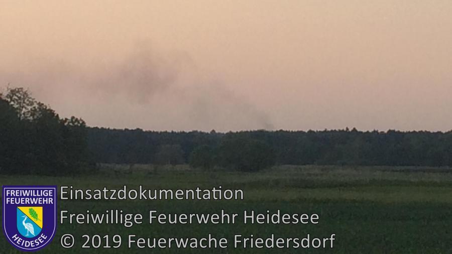 Einsatz 55/2019 | 400m² Waldbodenbrand | Kummersdorf (LOS) ri. Philadelphia | 04.06.2019