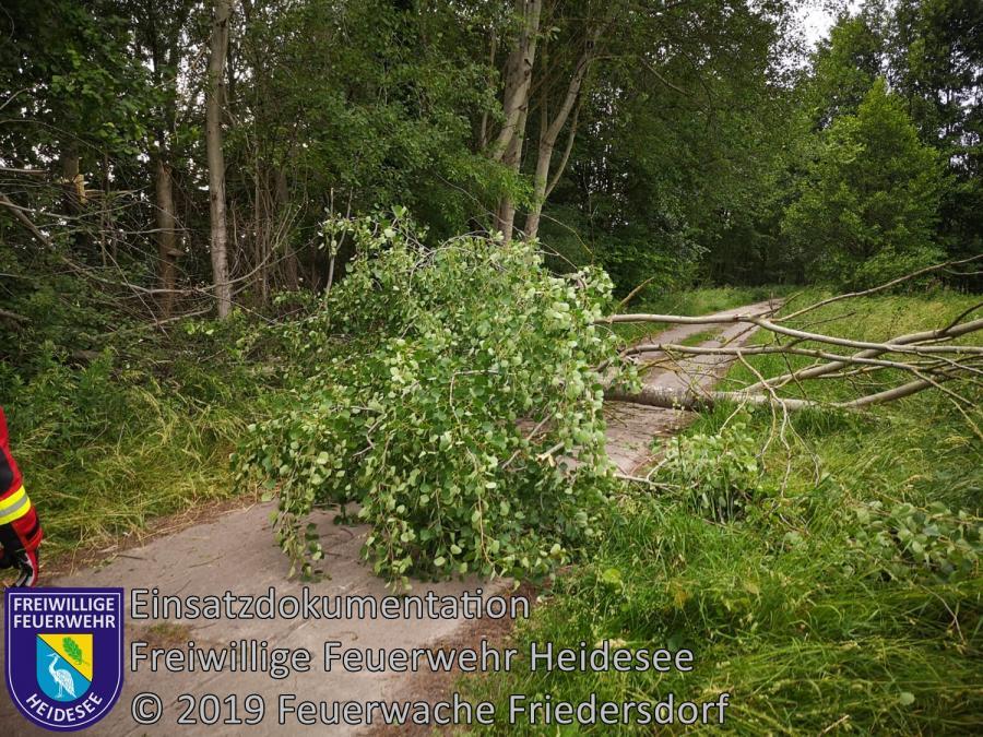 Einsatz 70/2019 | Baum auf Straße | Friedersdorf Ri. Dannenreich Höhe Dudel | 12.06.2019