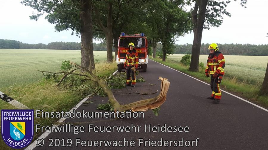 Einsatz 72/2019 | 3 größere Äste auf Fahrbahn | L39 OV Friedersdorf - Blossin | 12.06.2019