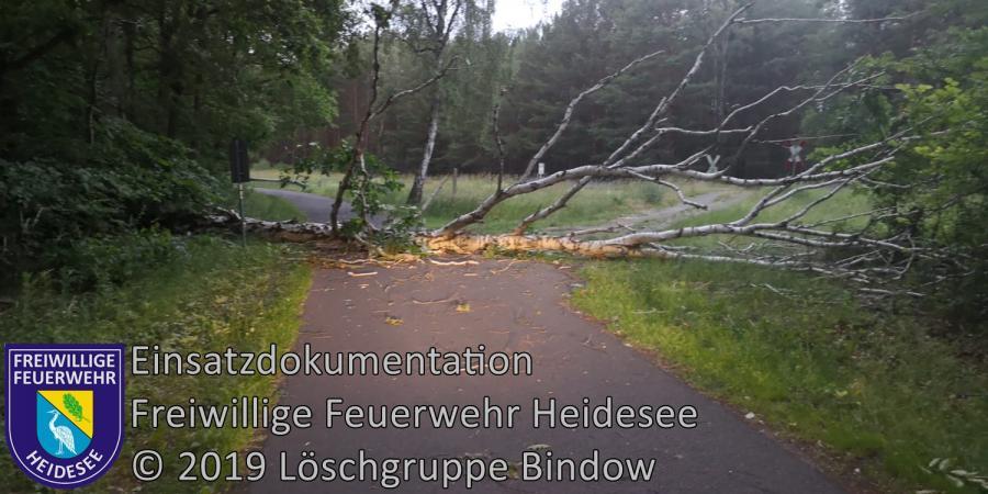 Einsatz 76/2019 | Baum auf Straße | Bindow Siedlung Nord | 12.06.2019