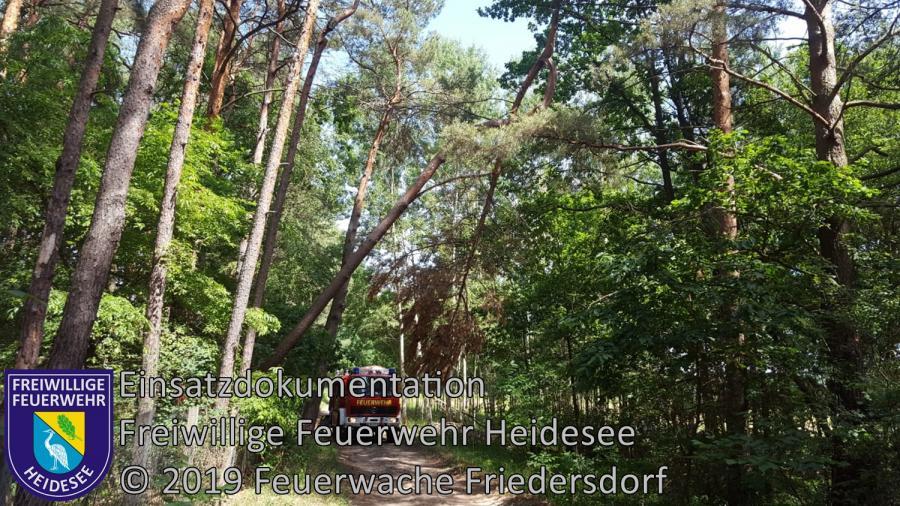 Einsatz 77/2019 | Baumkrone droht zu stürzen | Blossin Kolberger Straße | 14.06.2019