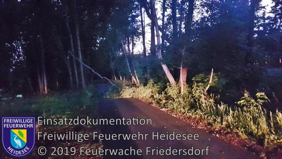 Einsatz 79/2019 | Baum auf Straße | Bindow Siedlung Nord | 15.06.2019