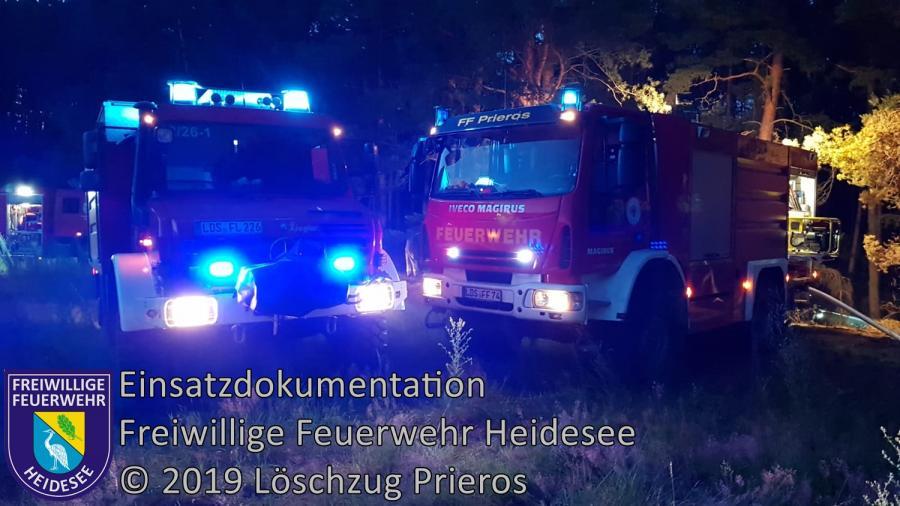 Einsatz 81/2019 | 700m² Waldbodenbrand | Pätz Weinbergstraße | 17.06.2019
