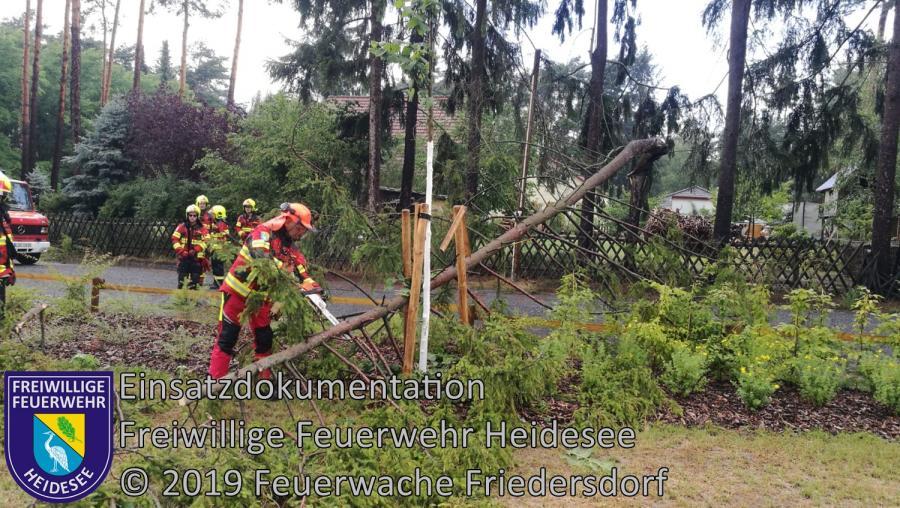 Einsatz 96/2019 | Baum in Telefonleitung | Bindow Nordkorso | 13.07.2019