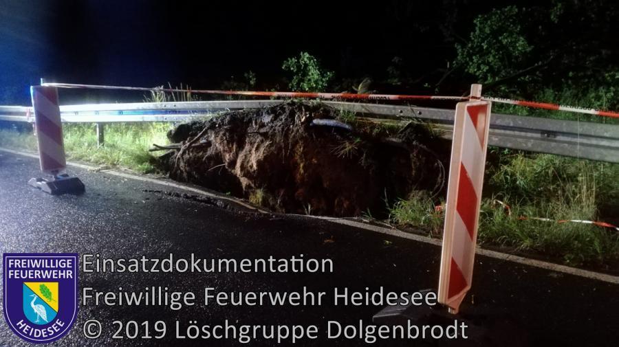 EInsatz 102/2019 | Baum auf Straße | L40 OV Bindow - Senzig | 21.07.2019
