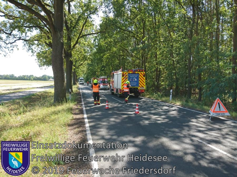 Einsatz 110/2019 | Ast droht zu stürzen | L40 OV Wolzig - Friedersdorf | 24.07.2019