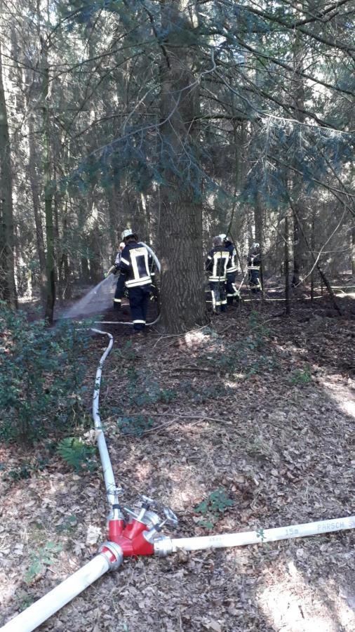 Waldbrand, Hofdienerweg