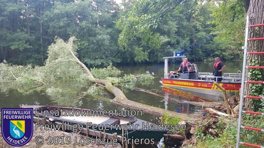 Einsatz 119/2019 | 3 Bäume im Wasser | Prieros Ziegelei | 02.08.2019