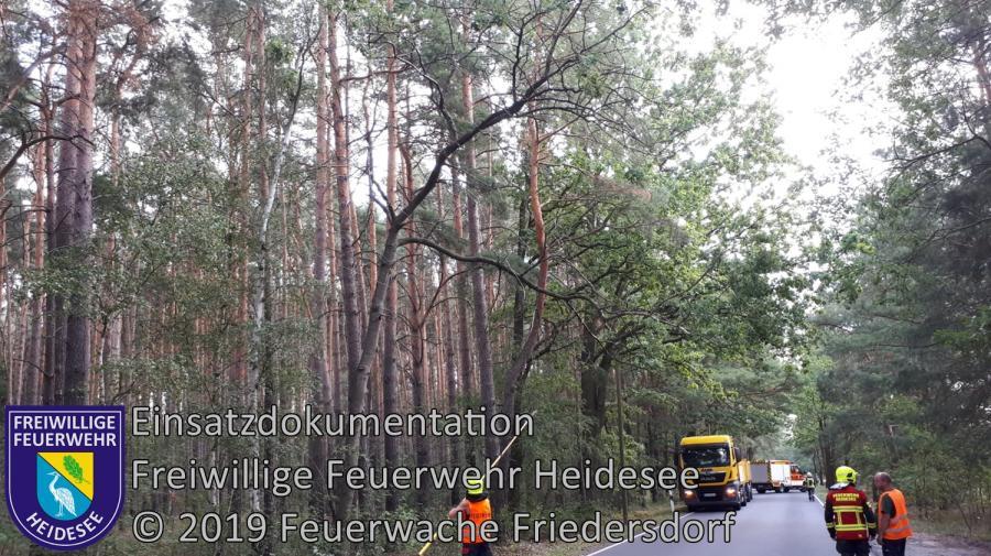 Einsatz 131/2019 | Ast droht zu stürzen | K 6152 OV Gussow - Bindow | 26.08.2019