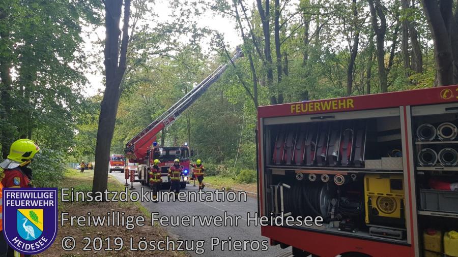 Einsatz 135/2019 | Baum droht zu stürzen | Kolberg Am Campingplatz | 05.09.2019