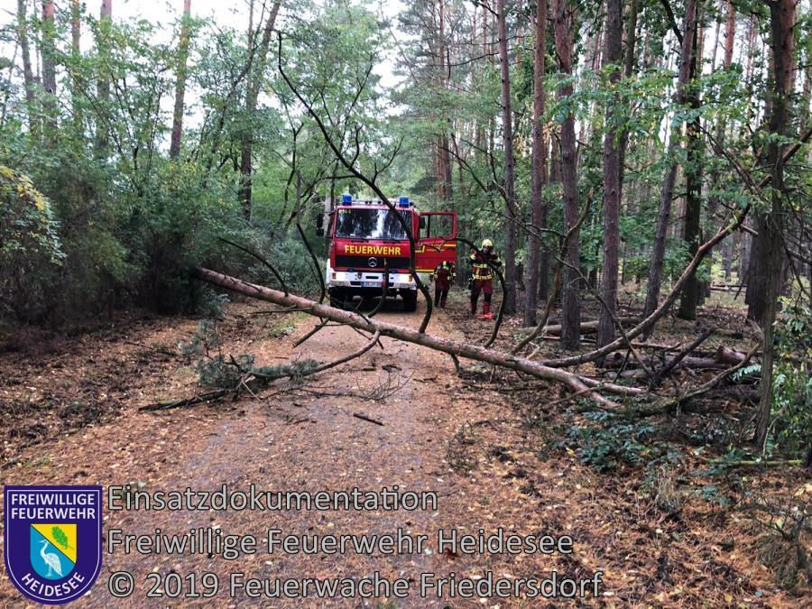 Einsatz 153/2019 | Baum auf Straße | Friedersdorf Straße Nr. 4 | 30.09.2019