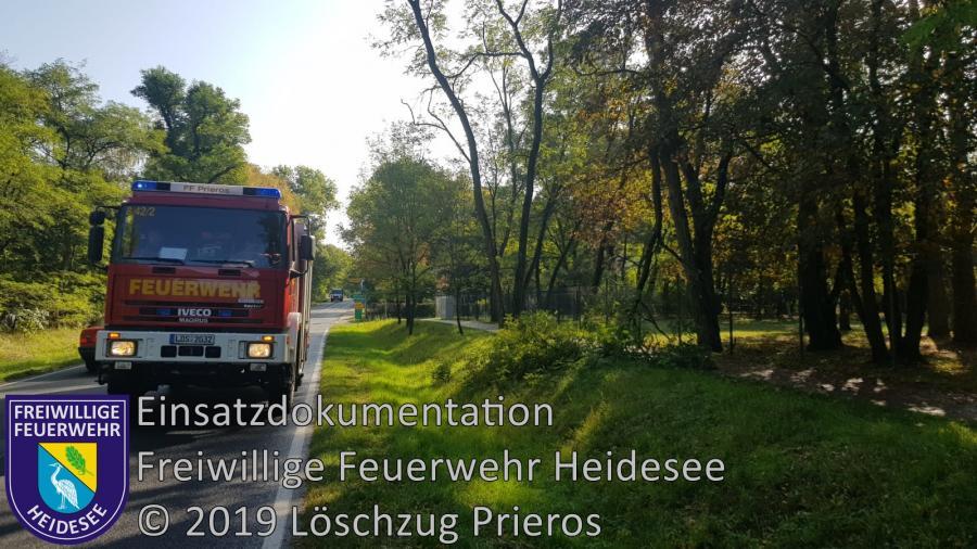 Einsatz 159/2019 | Baum auf Gehweg | Prieros Prierosbrück | 09.10.2019