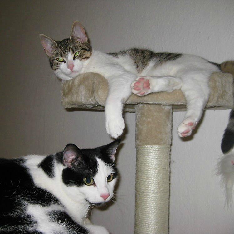 Kitty & Jürgen