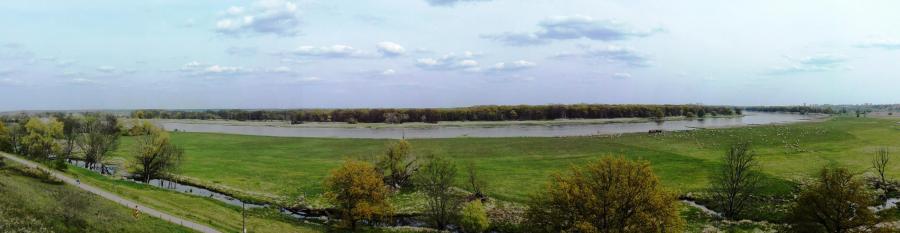 Die Oderlandschaft bei Lebus
