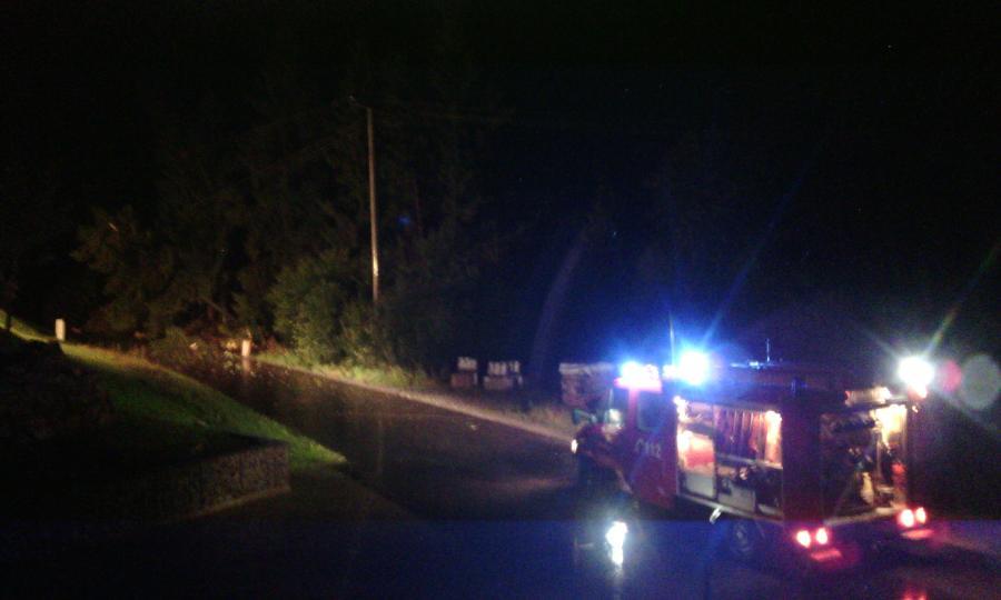 Baum in Stromleitung Sommersberg 2