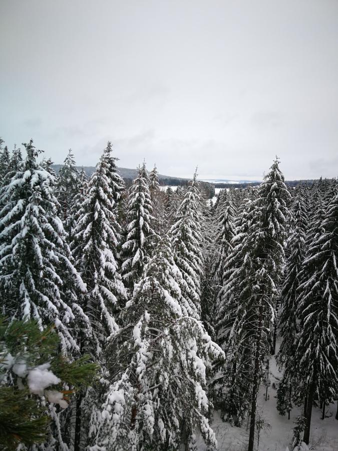 SchneeGeyer2