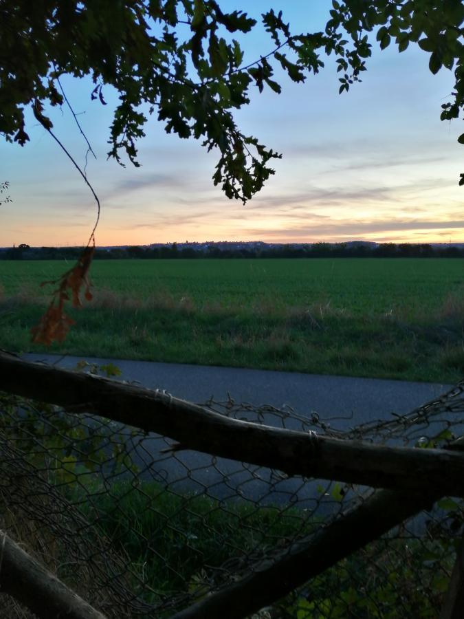 Auf dem Messdorfer Feld