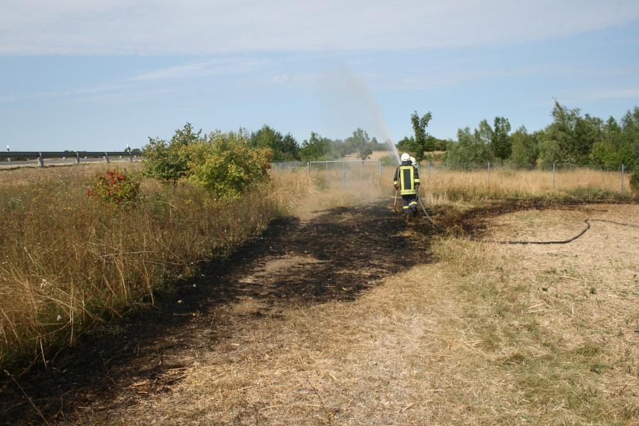 Stoppelfeldbrand an der B166
