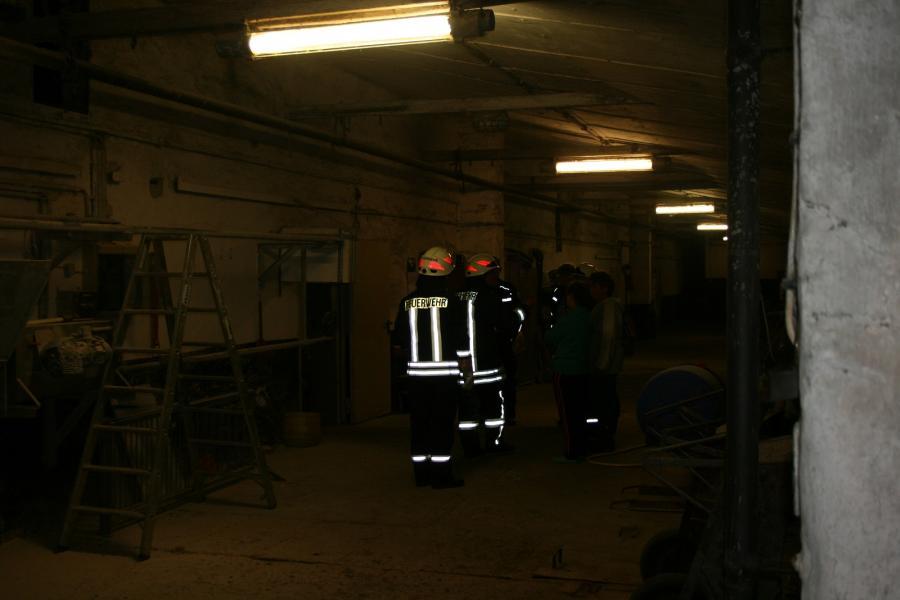 Kabelbrand im Schweinestall von Hohengüstow
