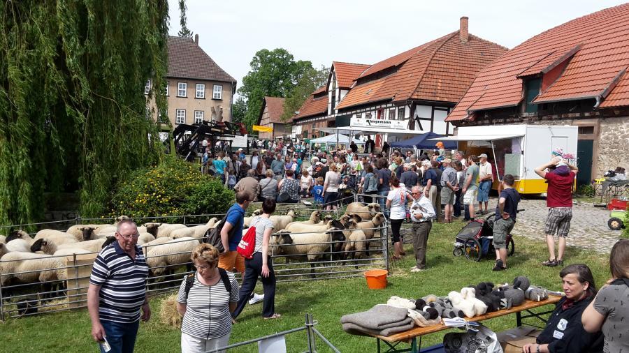 Impressionen vom Schäferfest 2016
