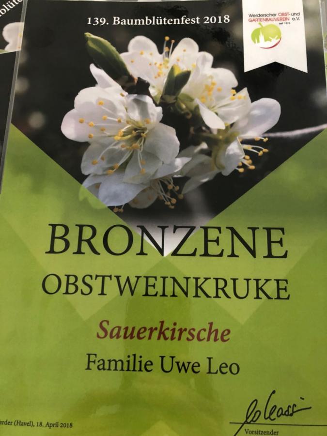 Bronzene Obstweinkruke