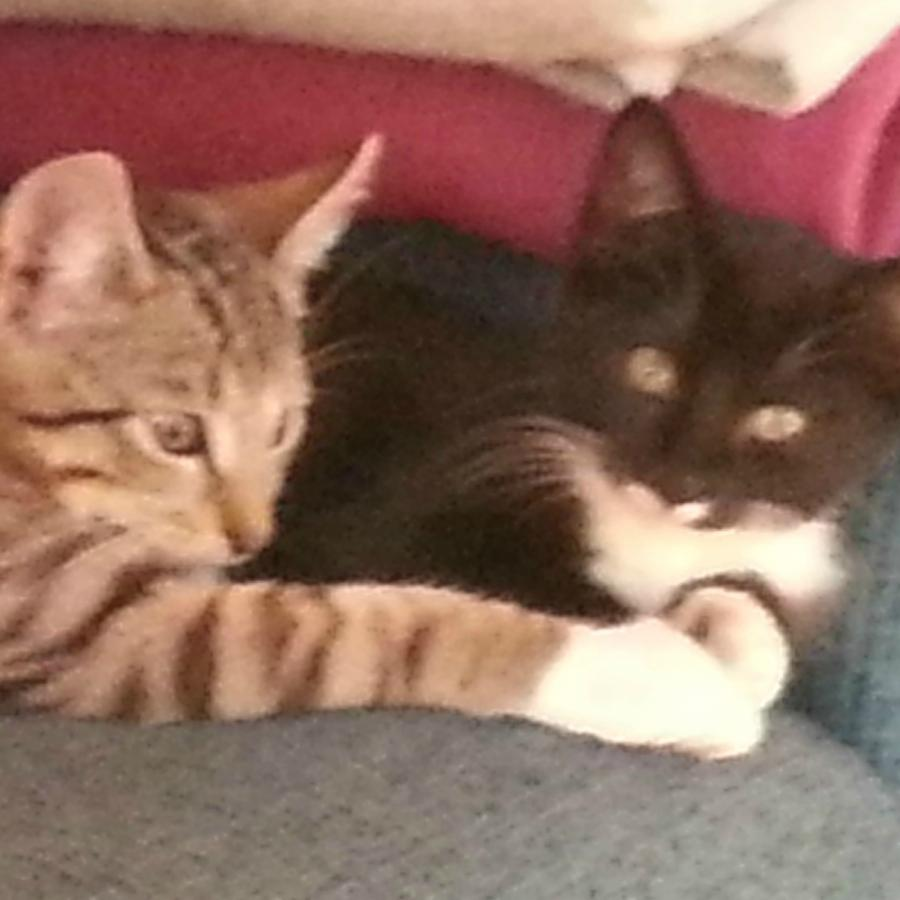 Isa & Igor