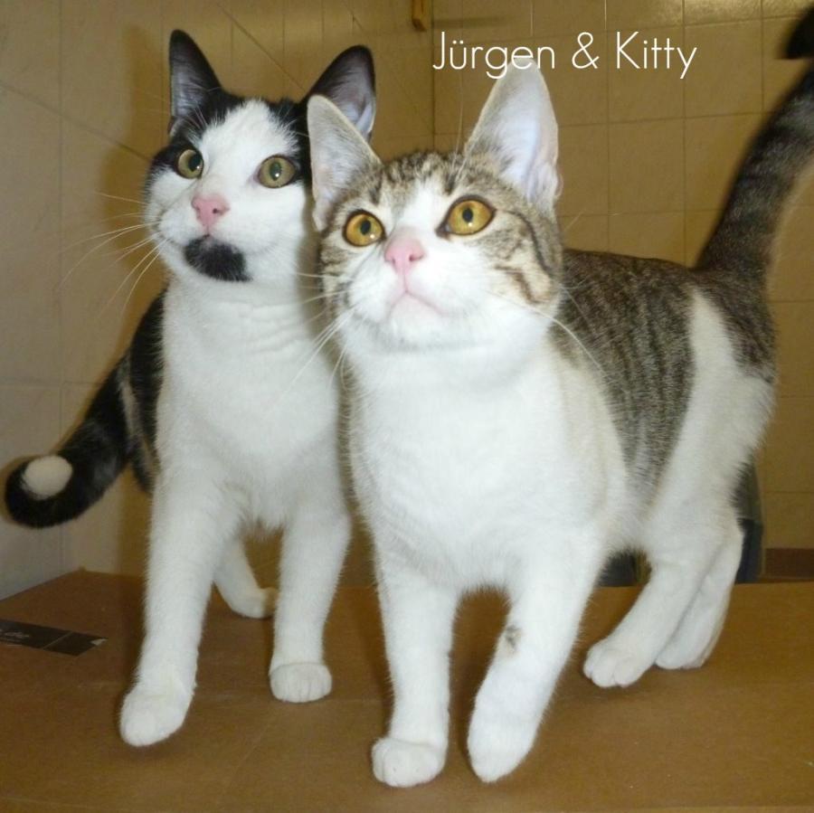 Jürgen&Kitty