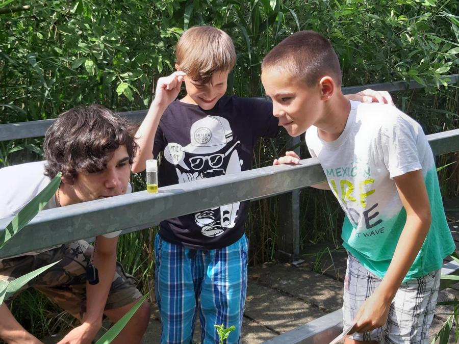 Untersuchung an einheimischen Gewässern Bild 1