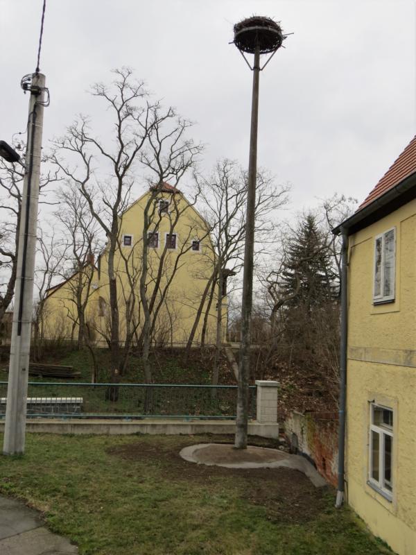 Storchenhorst_Dommitzsch