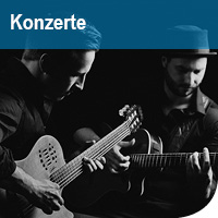 Kacheln_Konzerte_Simon und Tobias Tulenz_Foto_Künstler