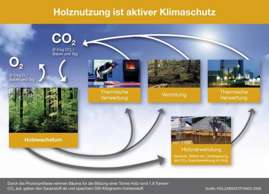 Holznutzung ist aktiver Klimaschutz
