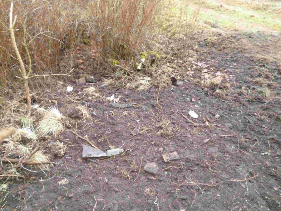 Anfütterungs- / Müllplatz Naturschönheit in Wabel