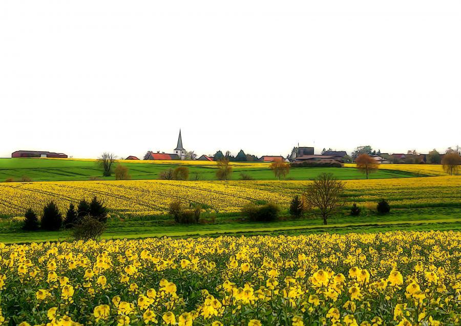 Klaus Zilinski -Gelbe Jahreszeit in Ottenstein