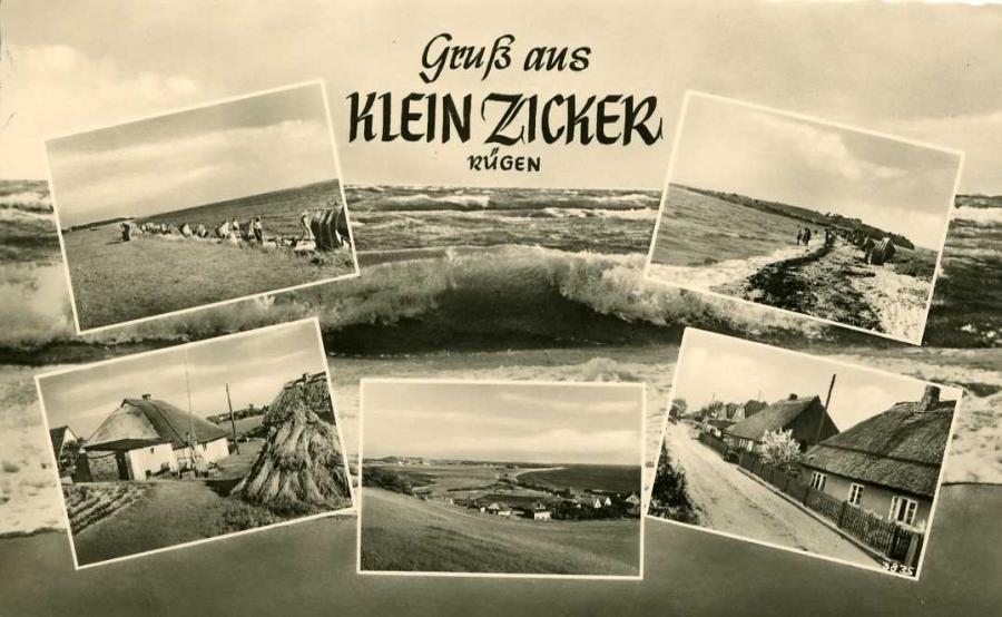 Klein Zicker 1961