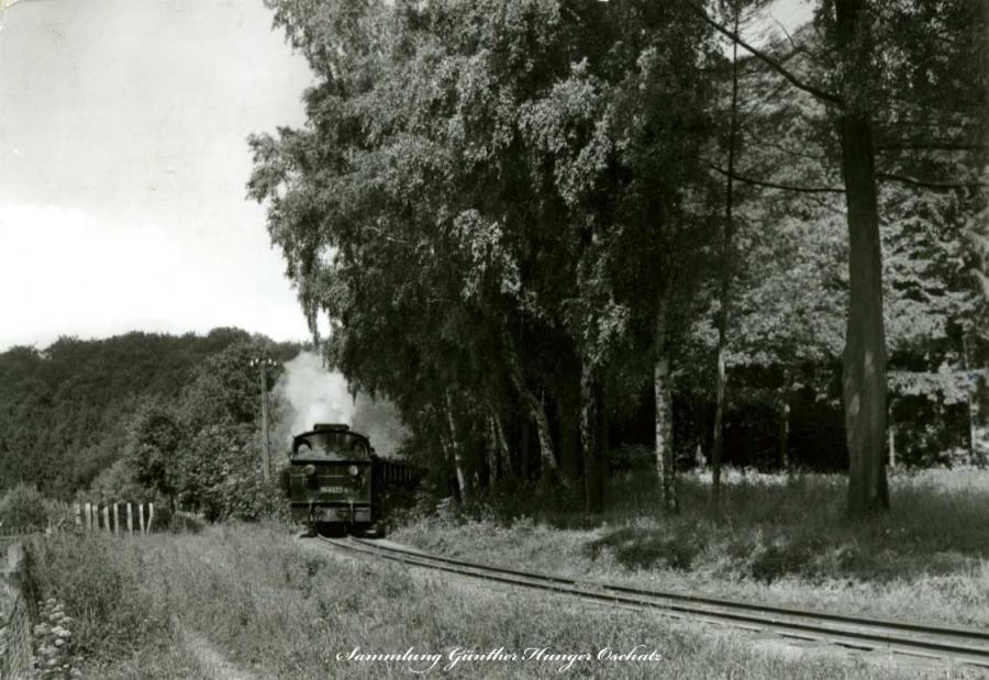 Kleinbahn auf der Insel Rügen