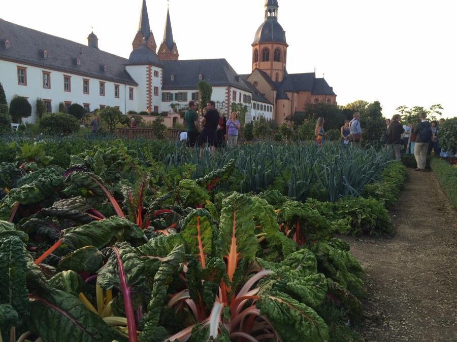 Klostergarten Seligenstadt (c) KulturRegion